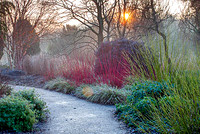 SIR HAROLD HILLIER WINTER GARDENS;PHOTOGRAPHS CLIVE NICHOLS