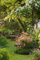 Andre Eve Rose Garden