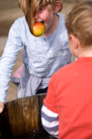 56396 APPLE BOBBING