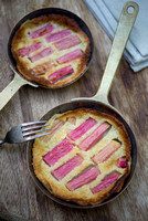 RHUBARB FOOD AND DRINK ,ALL;PHOTOGRAPHS JACKY HOBBS