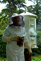 BEEKEEPING;PHOTOGRAPHER MICHELLE GARRETT