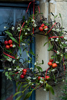 XMAS RED BERRIES AND DECORATIONS;PHOTOGRAPHER MICHELLE GARRETT