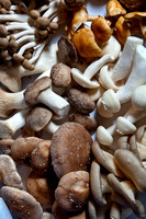 Mushrooms; Grow and cook